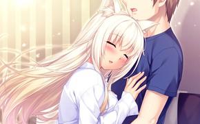 Picture anime, art, girl, guy, Nekopara, Necoara