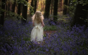 Picture forest, flowers, girl, bells, curls