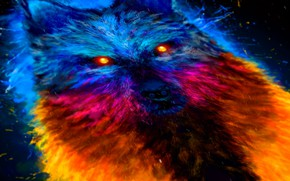 Picture eyes, wolf, color