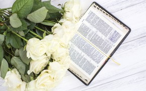 Picture bouquet, Book, buds, White roses