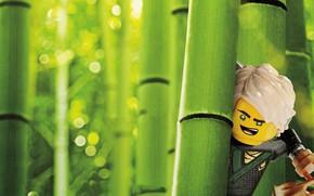 Picture Lego, animated film, animated movie, Lloyd, The Lego Ninjago