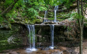 Picture greens, forest, trees, rock, stones, waterfall, moss, USA, Minnesota