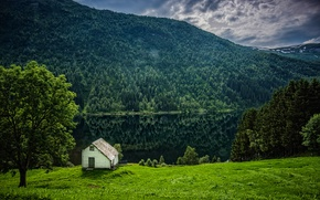 Picture greens, forest, grass, trees, mountains, river, shore, Norway, house, Hordaland, Flisram