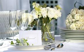 Picture flowers, roses, bouquet, white, decor, serving