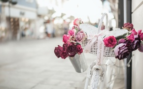 Picture bike, street, roses