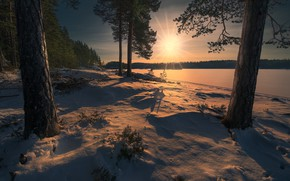 Picture forest, snow, Norway, Norway, Ringerike