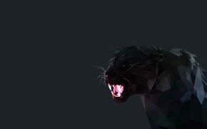 Picture black, Minimalism, fangs, Black Panther