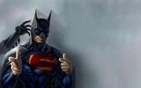 Picture Hero, Batman, Superman, Funny, Humor