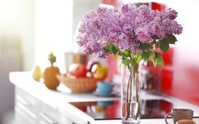 Picture flowers, room, bouquet, mug, vase, lilac, bokeh