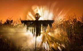 Wallpaper Halloween, Lord of the Corn, holiday