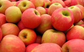 Picture apples, texture, harvest, fruit