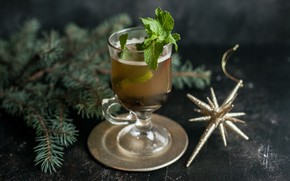 Picture spruce, drink, mint