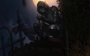 Picture night, elf, the game, art, The Elder Scrolls Legends