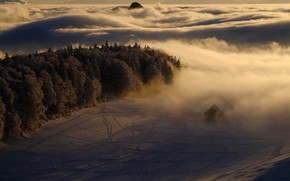 Picture forest, clouds, snow, trees, traces, fog, house, morning