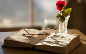 Wallpaper glasses, book, rose