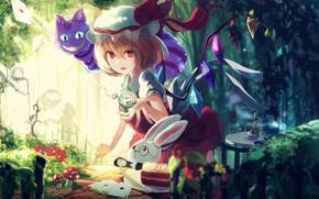 Picture anime, girl, Touhou, Touhou, Touhou