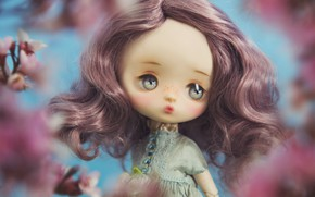 Picture hair, toy, doll