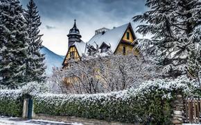 Picture winter, snow, trees, photo, tree, mansion, Clo Dallas