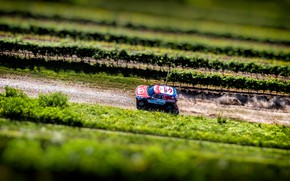 Picture Mini, Sport, Speed, Race, The view from the top, Rally, SUV, Rally, X-Raid Team, MINI ...