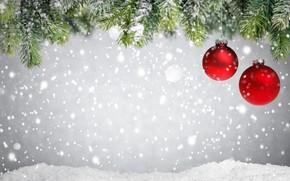 Picture winter, snow, decoration, balls, tree, New Year, Christmas, Christmas, winter, snow, Merry Christmas, Xmas, decoration