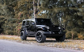 Picture Black, Wrangler, Jeep