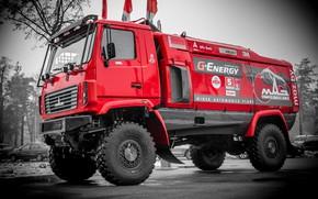 Picture Red, Sport, Truck, Rally, Dakar, Dakar, Rally, MAZ, MAZ