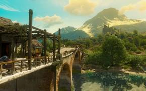 Picture forest, bridge, river, castle, the witcher 3 wild hunt