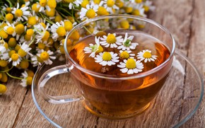 Picture tea, Daisy, flowers
