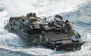 Picture amphibian, USA., crawler, marine corps, amphibious machine, aav-7