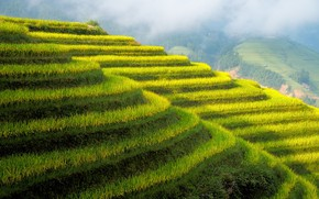 Picture mountains, slope, China, terrace, Guilin