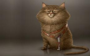 Wallpaper cat, Alexandre Blain, mood, paw, Koshak, art, character, prosthesis, minimalism