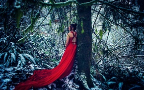 Picture forest, girl, snow, tree, red dress
