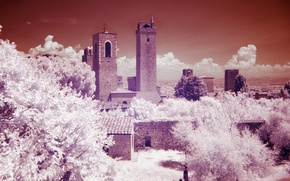 Picture trees, tower, Italy, Tuscany, San Gimignano, infrared the