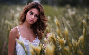 Picture field, grass, girl, portrait, makeup, hairstyle, brown hair, in white, nature, bokeh