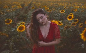 Picture field, girl, sunflowers, mood, red dress, long hair, Isabella Phillips