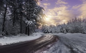 Picture cold, winter, sunset