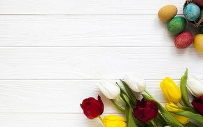 Picture eggs, spring, Easter, tulips