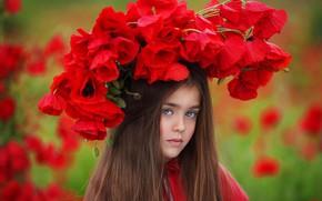Wallpaper flowers, wreath, girl, Maki, nature