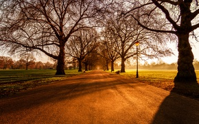 Picture London, Sunrise, Battersea Park