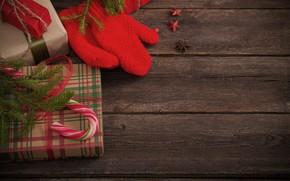 Picture gift, new year, mitten, prazdinik, spruce branch