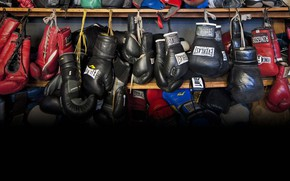 Picture Gloves, Gloves, Boxing