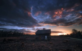 Picture forest, sunset, house