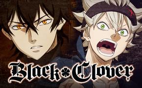 Picture anime, asian, manga, mahou, japonese, madoshi, Black Clover, Asta, Yuno, Black Bull
