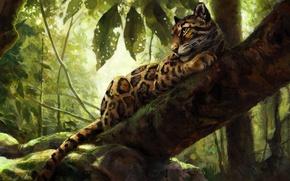 Wallpaper nature, tree, by kenket, leopard