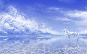Picture the sky, water, nature, unicorn, by Alaiaorax