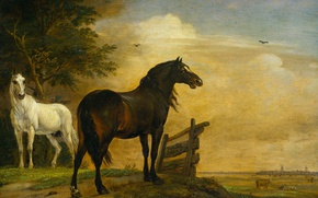 Picture animals, tree, oil, picture, Paulus Potter, Two Horses in a Pasture with a Fence