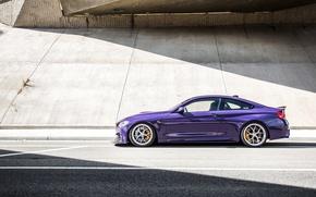 Picture light, photographer, BMW M4, Jeremy Cliff, Ultraviolet