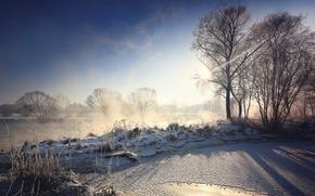 Picture winter, light, fog, river, morning