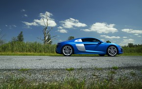 Picture Audi, Blue, Side, View, V10