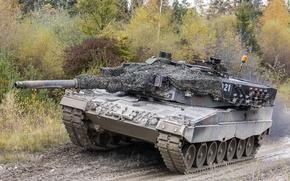 Picture dirt, the barrel, tank, Leopard 2